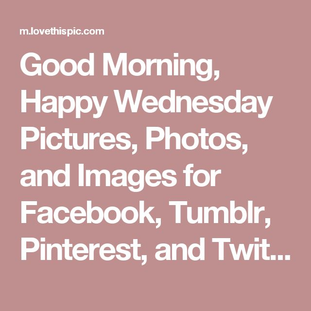 Good Morning, Happy Wednesday Pictures, Photos, and Images for Facebook, Tumblr, Pinterest, and Twitter