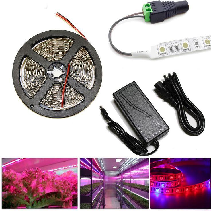 1 M 2 M 3 M 4 M 5 M LED Élèvent des Lumières DC12V Croissante LED Bande La Croissance des plantes Lumière Set + adaptateur + LED Usine élèvent la lumière