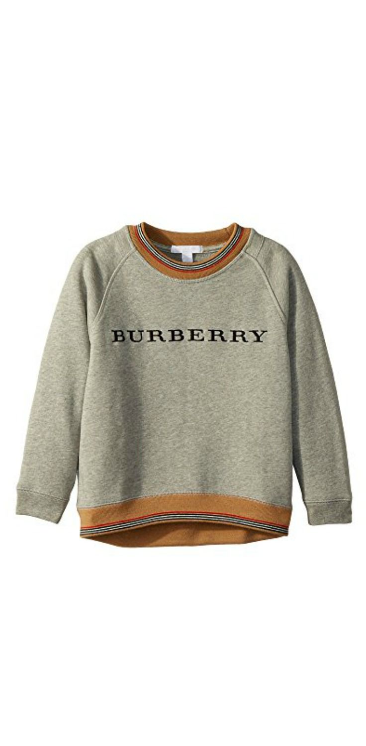 6af5f8150f99 The tale is timeless. Enjoy new adventures in the handsome heritage of the   Burberry  Kids Hectore ABNGP  Top.  boys  tops  sweatshirts  apparel   clothing ...