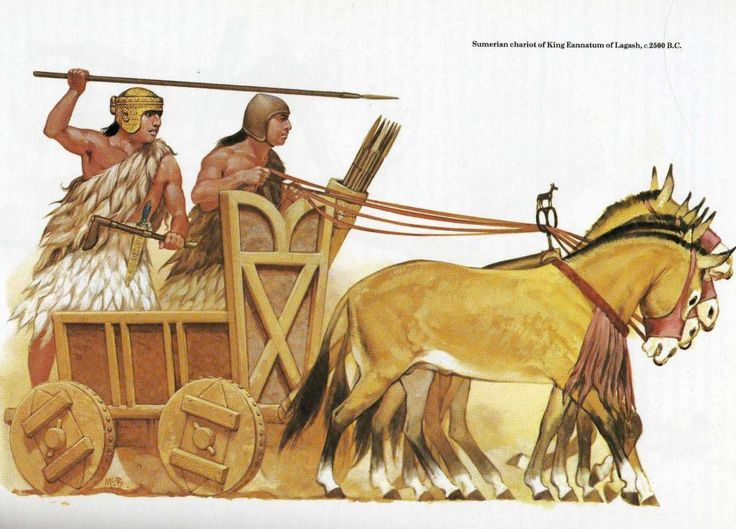 sumerian soldiers sumerian wheels and chariots. Black Bedroom Furniture Sets. Home Design Ideas
