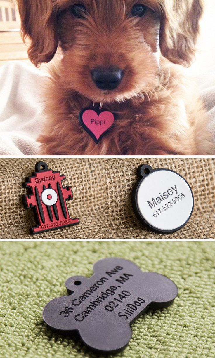 No more noise from jingling metal or plastic dog tags. These silicone dog tags are flexible, durable, fade-proof, and silent.