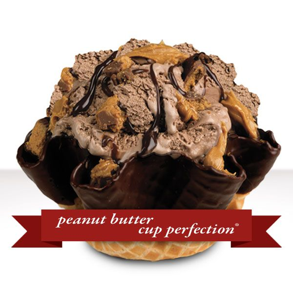 Peanut Butter Cup Perfection: Chocolate Ice Cream mixed with Reese's Peanut Butter Cups, real peanut butter and fudge. #delicious #addicting
