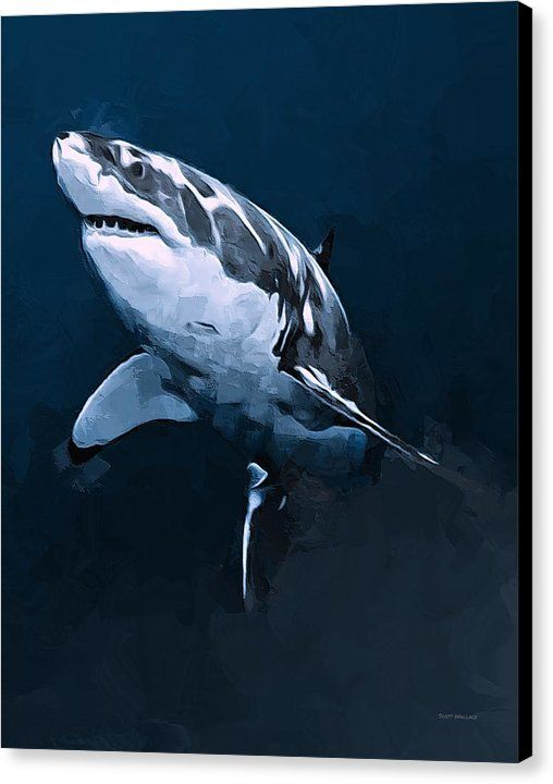 Gray Wash Great White Shark Tattoo Design