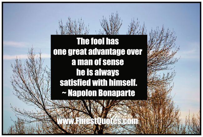 Best 25+ Fool Quotes Ideas On Pinterest