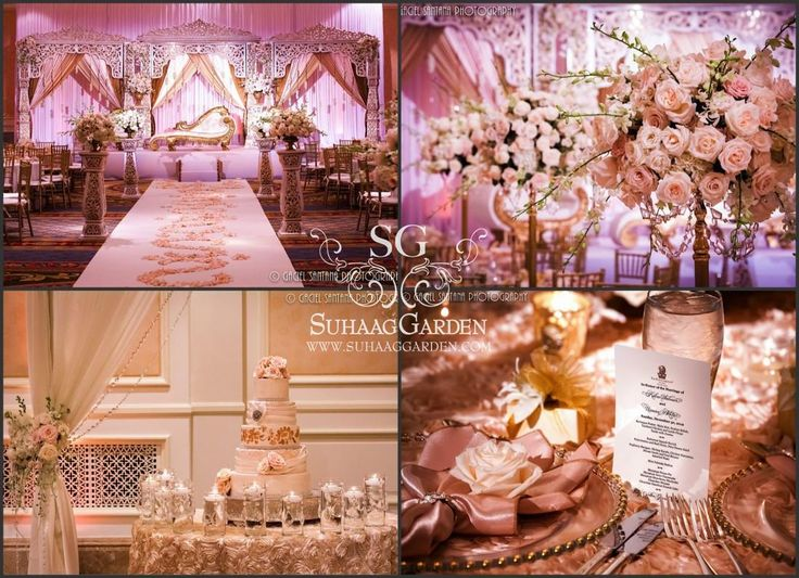 15 best sg collages color boards images on pinterest indian shades of blush pink and cream suhaag garden florida indian wedding decorators wedding color boardscolor themesblush junglespirit Choice Image