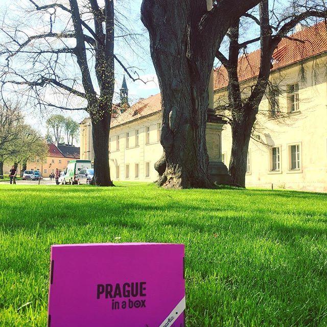 And today we are looking forward to the announcement of the winner of the @praguetoday contest! #pragueinabox #praguetoday #contests #instagood #pink #grass #praha #prague #strahov #praguetour #praguecity #pragueguide #travel