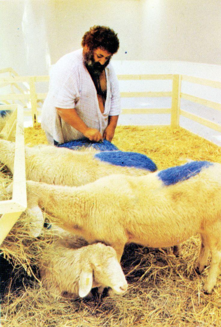 Painting sheep.jpg
