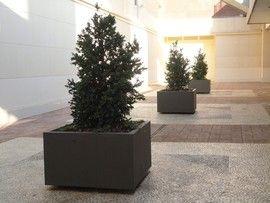 #jardineras cuadradas hormigón prefabricado gris granítico en el patio interior de un centro comercial