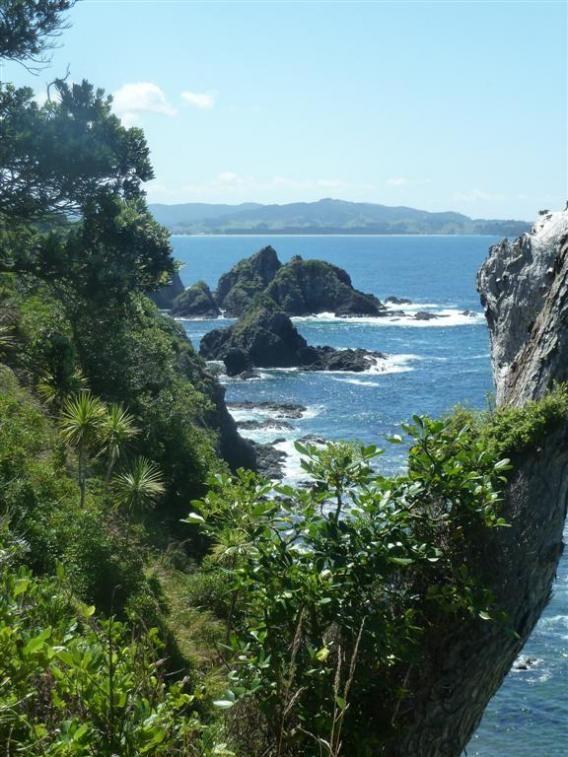 New Zealands Best Beaches: Northland New Zealand