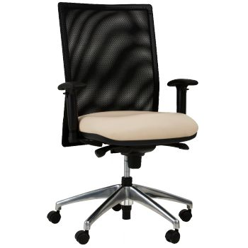 27 Best Ergonomic Amp Task Chairs Images On Pinterest Desk