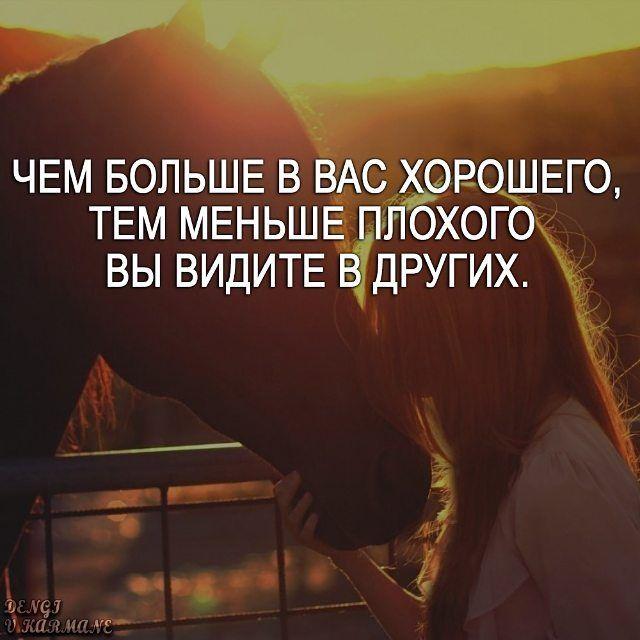 #мотивациянакаждыйдень #мечта #мотивация #мудрость #философияжизни #мудростьдня #счасть_есть…