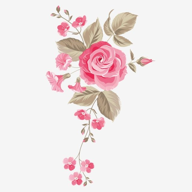 Garden Rose Flower Centifolia Roses Floral Design Watercolor Painting Flower Pink Flower Png Transparent Clipart Image And Psd File For Free Download Flower Clipart Floral Design Hd Flowers