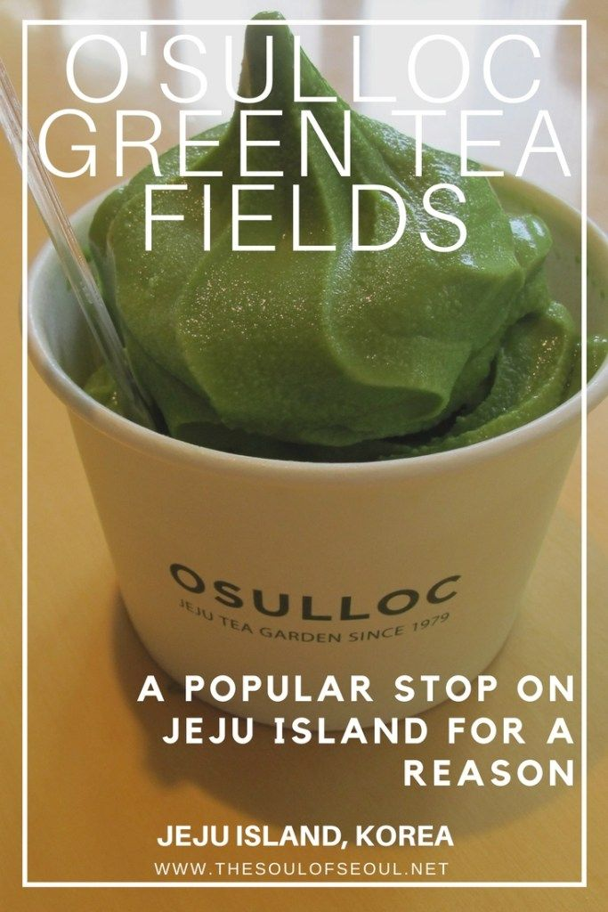 O'Sulloc Green Tea Fields, Jeju Island, Korea: The O'Sulloc Green Tea Fields are a popular destination on the island of Jeju in Korea for tourists. Must see for any visitor to the island. There's a reason it's popular. The fields are gorgeous and the ice cream is delicious.