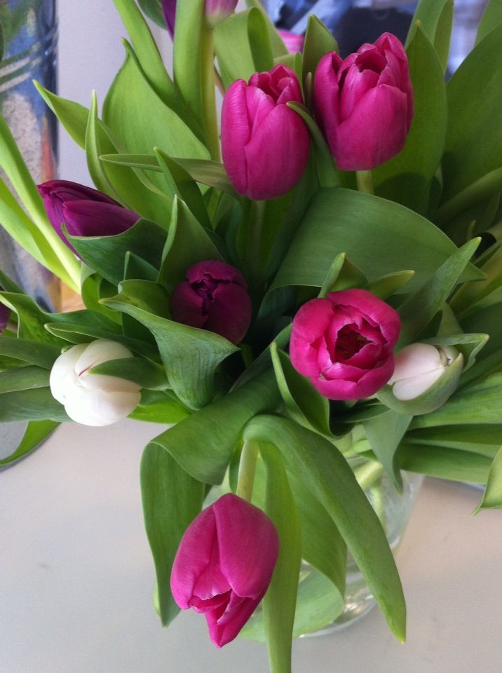 Tulips - perfect wedding colours