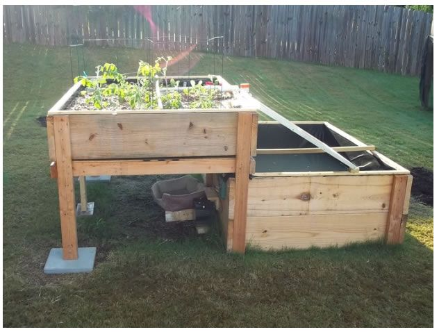 Aquaponic Systems Do It Yourself : Backyard solar powered aquaponics system http