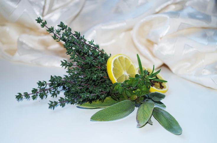 V dnešní době je velmi populární pít teplou vodu s citrónem. Možná jste slyšeli, že by se měla pít nalačno. Jenže proč?