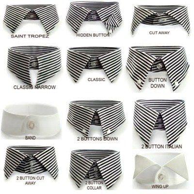 Collars: know them.