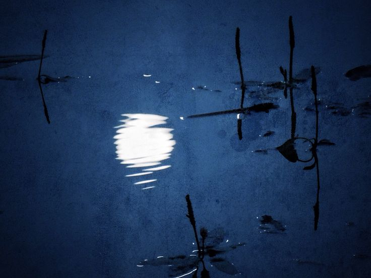 The full moon reflecting in the lake at dawn