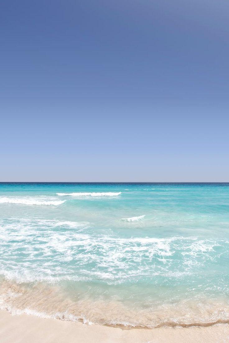 Seashore Near Ocean Under Blue Skies