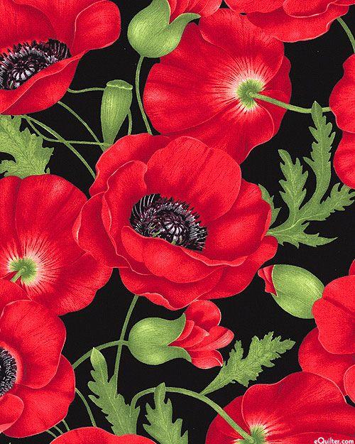 Flora - Poppy Affair - Black
