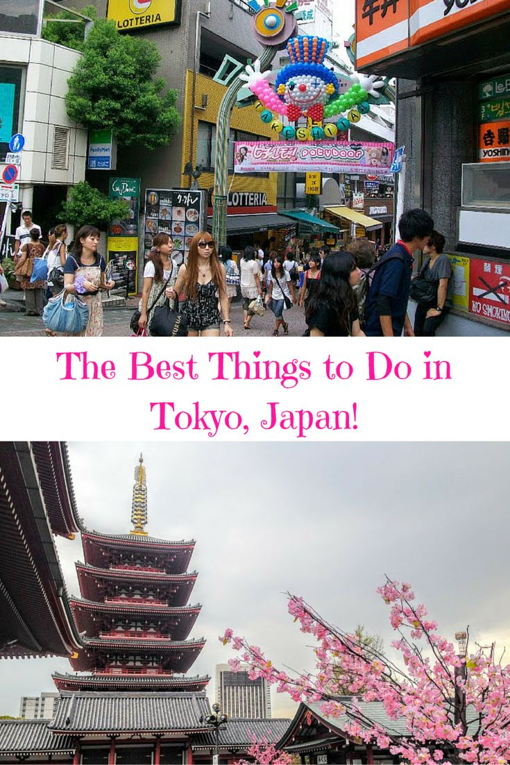 Find out the best shopping districts, temples, shrines, and clown balloons in Tokyo, Japan! Just click here!