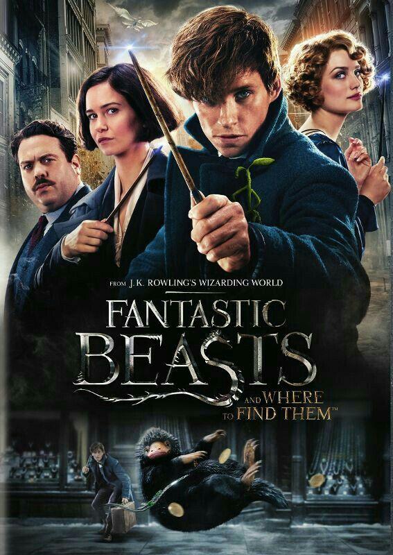 Pin De Matheus Kla Em Fantastic Beasts Bestas Fantasticas Beast