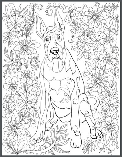 344 best Adult coloring pages images on Pinterest Adult coloring