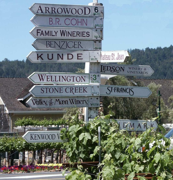 The wineries or Sonoma.  Fill your day with life, love and wine.