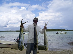 17 best images about eleuthera bahamas on pinterest for Deep sea fishing savannah