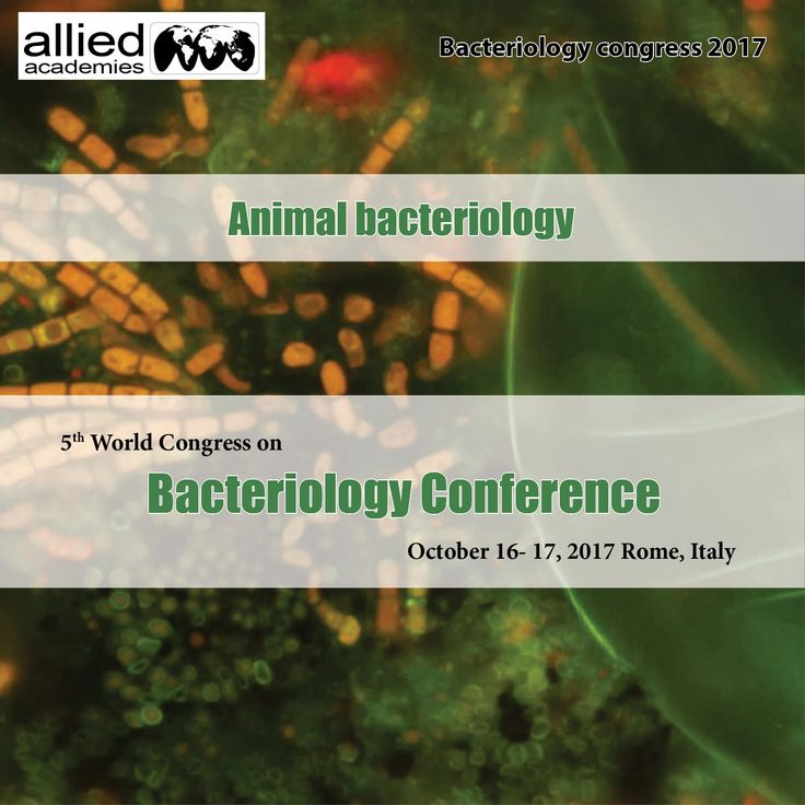 Animal bacteriology The Animal bacteriology provides high quality, detailed and complete diagnostic Bacteriology testing service to veterinary clients round the clock coverage for the #veterinary medical teaching hospital, and contributes to the education of the veterinary students. Several major groups of bacteria are considered very #significant in animal health and welfare. Some of these bacteria are very pathogenic, their severe pathogenicity causes different kinds and levels of…
