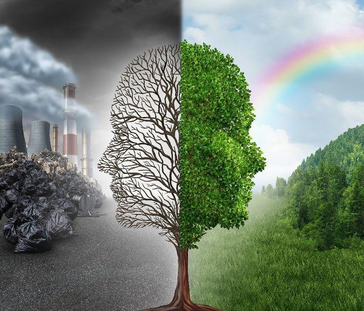 Životní prostředí - Fred - Nechte se inspirovat