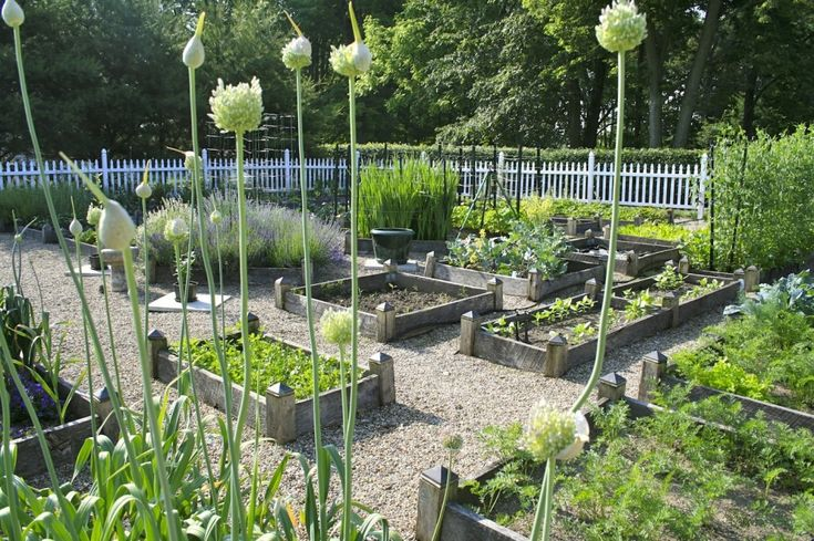 Planning ideas for your vegetable garden - Beautiful garden fencing ideas ...