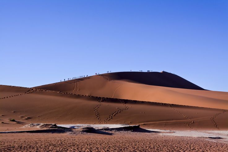 Big Daddy dune in Sossusvlei region of Namibia. Trekkers make their way to the top of the dune in early morning light.