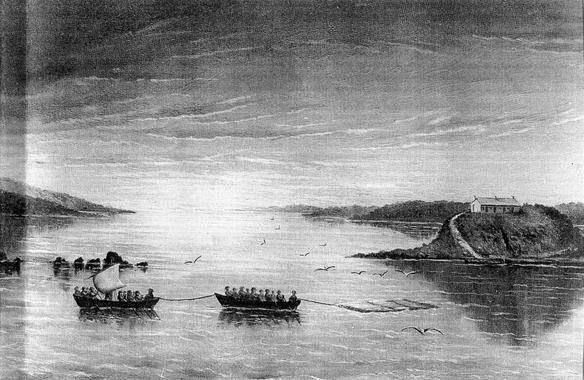 Grummet Island 1824 with prisoners towing a raft of logs to Sarah Island