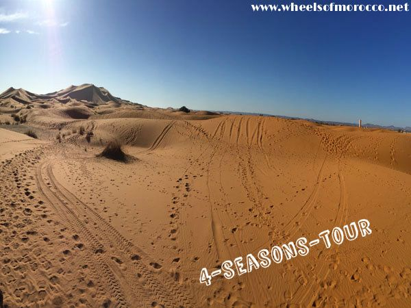 """Our 4 Season tour bring you from the #Sahara, through the amazing beaches of the South - Guided by #BMW International Tourguide Academy certified guides!"""" Visit at our website for more detail."""