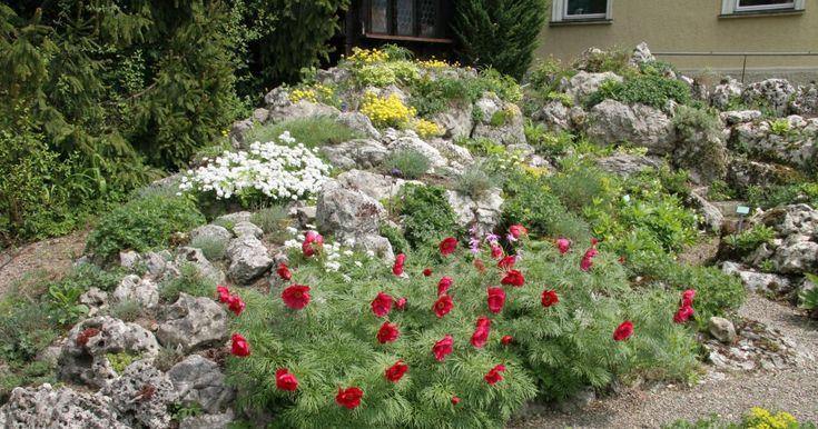 Ein Steingarten bietet auf kleinster Fläche eine enorme Farbenpracht – und blüht bei geschickter Pflanzenauswahl bis zum Herbst durch. Hier lesen Sie, wie Sie so ein Alpinum anlegen.