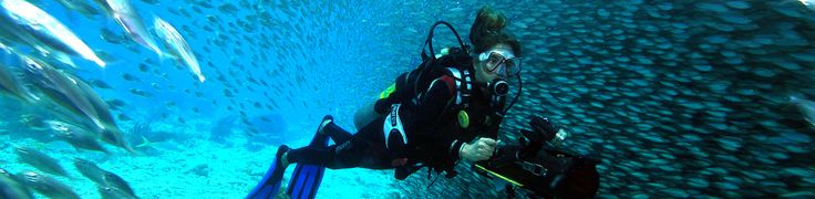 Beautiful diving spots.    http://www.harbourvillage.com/diving.html#
