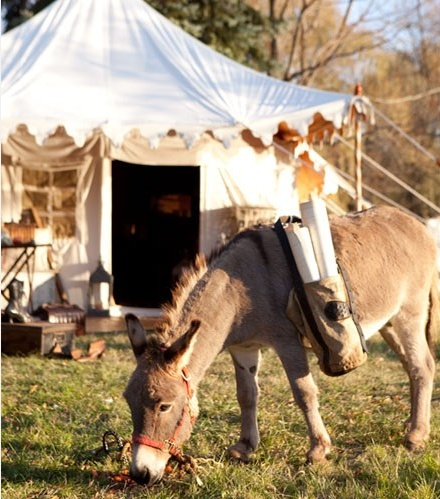 .: Sweets Donkeys, Tents I, Ien Donkeys