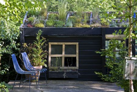 How to grow a roof for your garden shed #living #garden #succulents