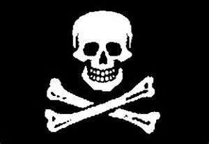 Best 25+ Pirate flags ideas on Pinterest | Pirate party ...