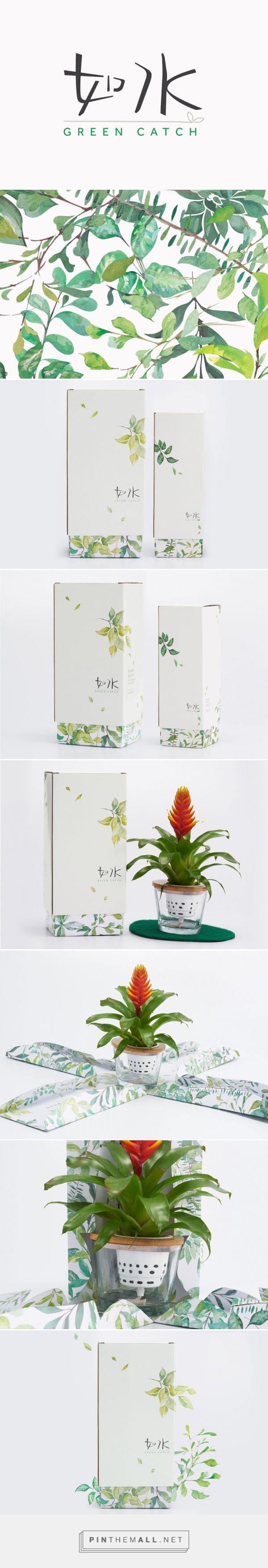 Green Catch plants packaging design by Box Brand Design (Hong Kong) - http://www.packagingoftheworld.com/2016/05/green-catch.html
