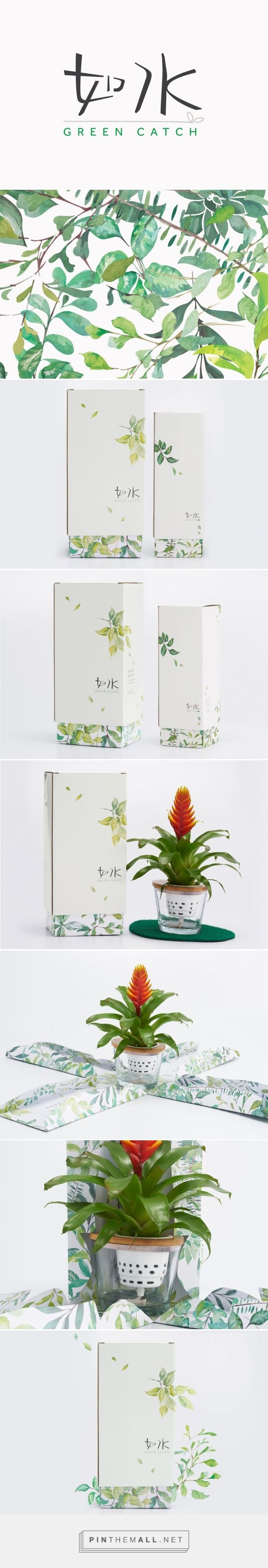 Green Catch plants packaging design by Box Brand Design (Hong Kong) - http://www.packagingoftheworld.com/2016/05/green-catch.html