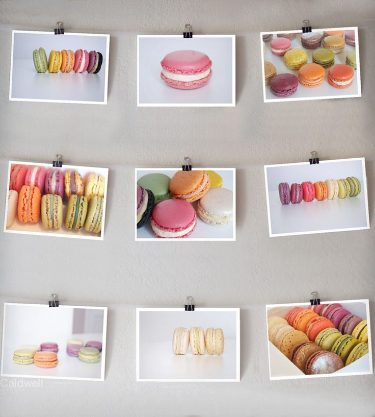 Macarons Photo Prints - Set of 9 | Art Photography | Sonja Caldwell Photography | Scoutmob Shoppe |