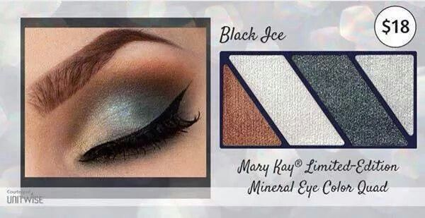 New! Mary Kay Black Ice Eye Color Quad order at www.marykay.com/jlowery100