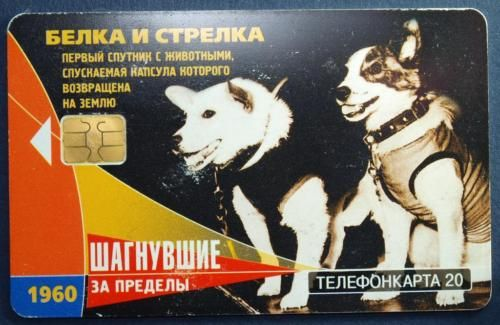 phonecard 1960 astronaut dog Layka BELKA STRELKA dog in space DOGS FIRST USSR in Collectibles, Historical Memorabilia, Other Historical Memorabilia | eBay