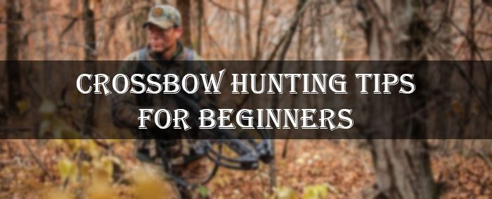 Are you a beginner hunter with a crossbow? Then read this post now where you can learn about Crossbow Hunting Tips For Beginners.
