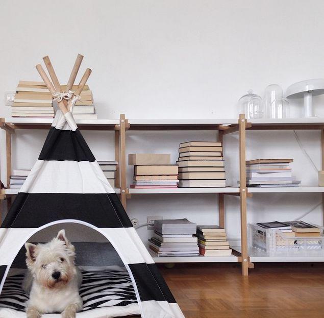 Un tipi pour chien, décoration