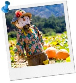 Create a Scarecrow Contest