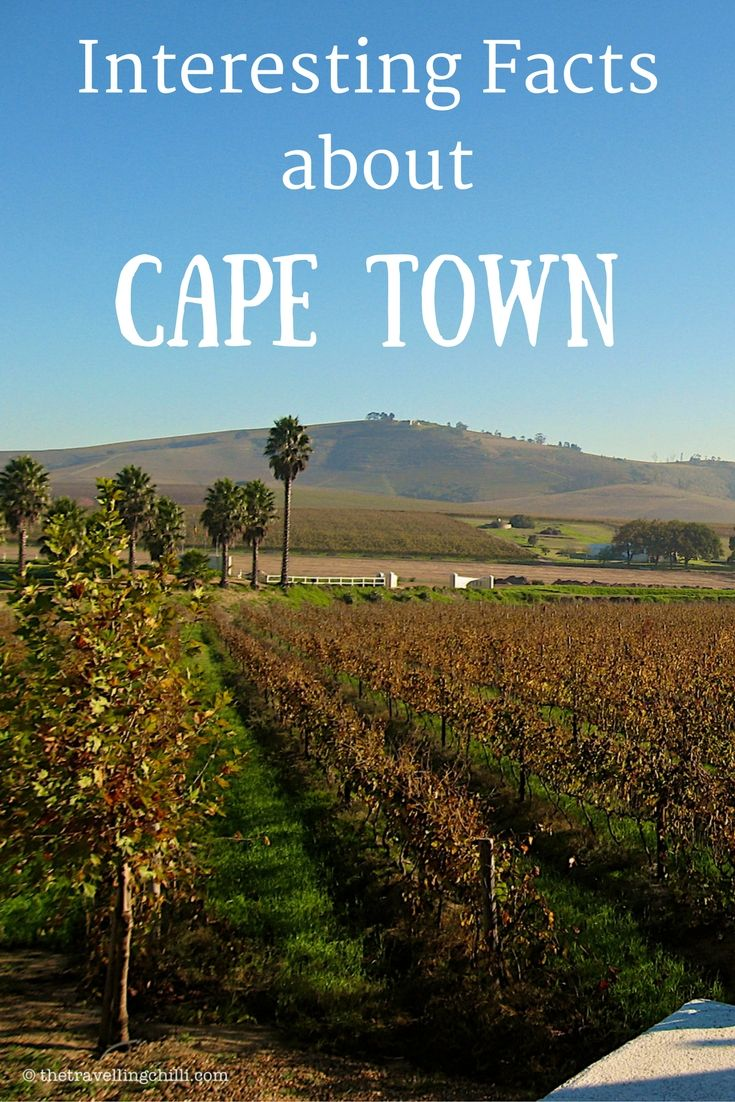 Interesting Facts about Cape Town in South Africa
