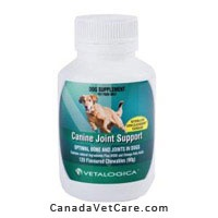 Manufactured by Vetalogica, Canine Joint Support is particularly important for treating arthritis and other joint related issues. These tablets contain vitamins and minerals that reduce the risk of nutritional developmental bone disorders in susceptible breeds. Canine Joint Support tablets also promote optimal growth and development of the musculo-skeletal system. http://www.canadavetcare.com/canine-joint-support-for-dogs/joint-care-treatment-207.aspx
